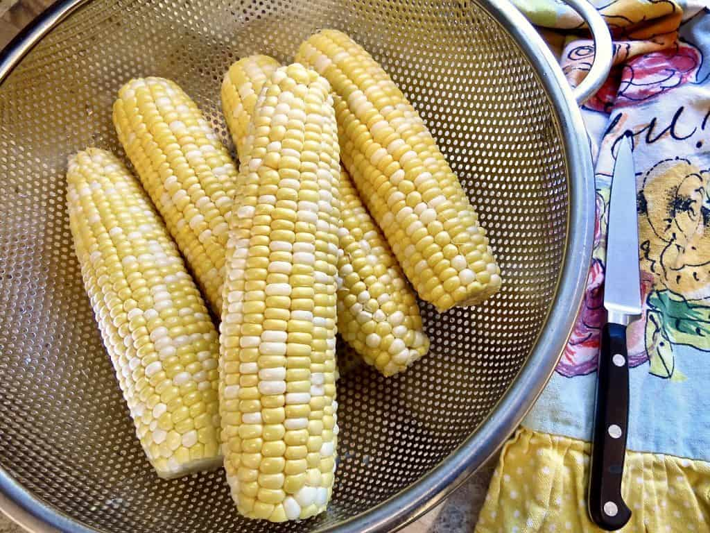 colander of fresh cleaned ears of corn